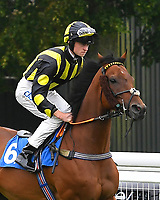 Air of York ridden by Sean Kirrane goes down to the start  of The Shadwell Racing Excellence Apprentice Handicap Div 1 during Horse Racing at Salisbury Racecourse on 14th August 2019