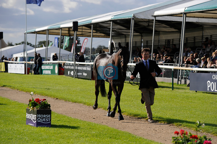 Stamford, Lincolnshire, United Kingdom, 4th September 2019, Francis Whittington (GB) & Evento during the 1st Horse Inspection of the 2019 Land Rover Burghley Horse Trials, Credit: Jonathan Clarke/JPC Images