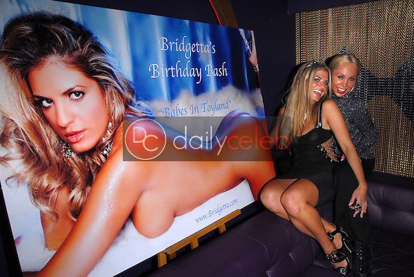 Bridgetta Tomarchio and Mary Carey<br /> at Bridgetta Tomarchio's Birthday Bash and Babes in Toyland 3rd Annual Charity Event, Bar 210, Beverly Hills, CA. 12-03-10<br /> David Edwards/DailyCeleb.com 818-249-4998