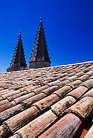 Rooftop tile  pattern and twin spires of Palace of the Pope, Avignon de Provence, France
