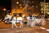 "A horse and carriage ride from Sealth Horse Carriage operated by (photo © Karen Ducey Photography) ""It was excellent!"" said Bill Strand and Sherry Evans Bonney lake, WA<br /> <br /> Kim Jarvis from Kirkland said about a previous ride ""it was so beautiful.""  Its like you're wrapped in holiday spirit. The blanket snuggled in with loved oneslooking at all the lights.  Its just like you're living a real life Christmas carol.<br /> <br /> Horse is clomping down the big city street.   It's a holiday setting.<br /> <br /> This is the center of our holiday city day.  They also went on the ferris wheel, had dinner at the Space Needle, and went ice skating."
