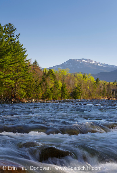 Peabody River with Mount Washington off in the distance in the White Mountain National Forest of New Hampshire USA during the spring months