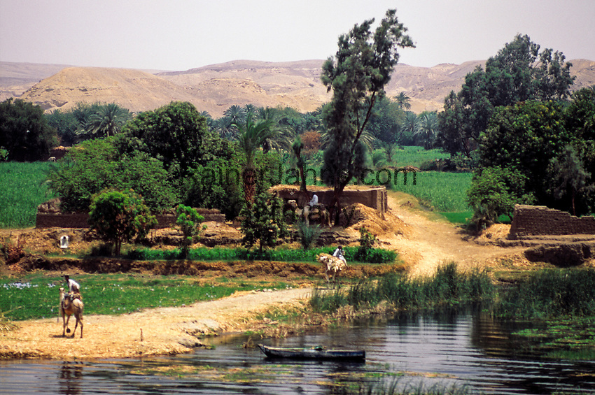 EGY, Aegypten, bei Assuan: Landschaft am Nil   EGY, Egypt, near Assuan: banks of river Nile