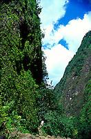 Hiking trail on the windward side of Oahu