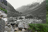 KLGO Photo Station CH-06 Long Hill, August 20, 2013, View to the south looking down valley toward Sheep Camp on Long Hill, Chilkoot Trail, Klondike Gold Rush National Historical Park, Alaska, United States. Photo by Ronald D. Karpilo Jr. The historic photo taken 1898 by Asahel Curtis (University of Washington Libraries, Special Collections, Klondike 235) is digitally overlaid on the repeat photo.