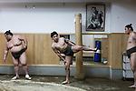 Tokyo, April 26 2013 - Young wrestler Ginseizan Takahiro, 20, training at Otakebeya sumo stable.