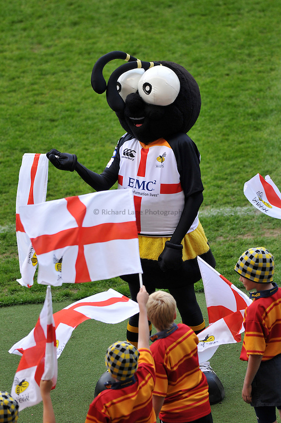 Photo: Tony Oudot/Richard Lane Photography. London Wasps v Bath Rugby. The St. George's Day Game. Guinness Premiership. 24/04/2010. .Wasps mascot Sting.