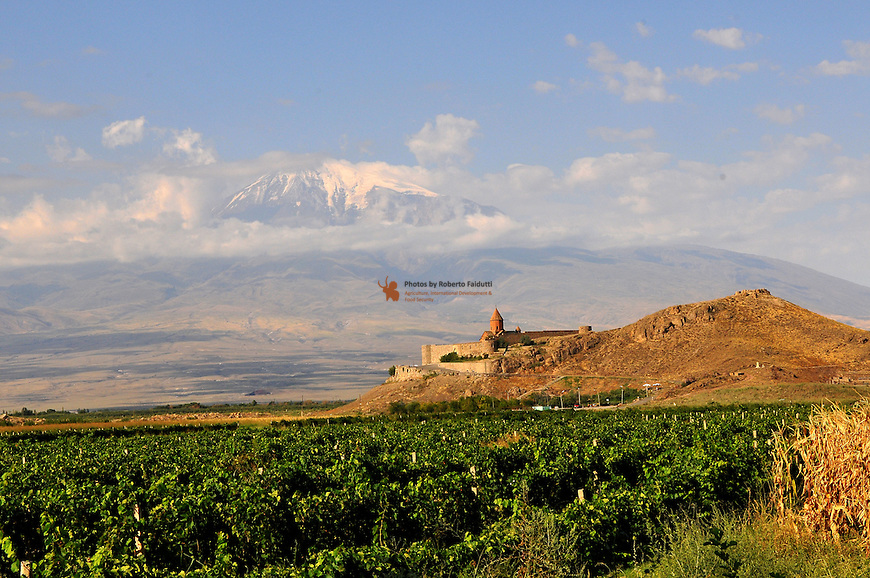 View of Monastery of Kohor Virap with Ararat mountain in the beckgraund