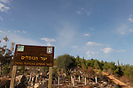Israel, Jerusalem Mountains. Memorial for the Fallen forest on Mount Eitan