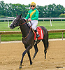Noble Ready winning at Delaware Park on 7/16/16