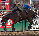Ty Fast Taypotat from Regina, SK won the nights bareback bronc riding event during the Reno Rodeo in Reno, Nevada on Sunday, June 19, 2016.