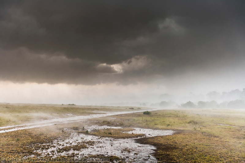 Afternoon rainstorm on the Masai Mara, Kenya, Africa