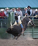 Travis Trazinsky competes in the bull riding event at the Smackdown Tour at Fuji Park in Carson City, Nev., on Saturday, June 7, 2014.<br /> Photo by Cathleen Allison
