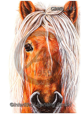 Simon, REALISTIC ANIMALS, REALISTISCHE TIERE, ANIMALES REALISTICOS, innovative, paintings+++++OliviaDeRivaz_DartmoorPony,GBWR185,#a#, EVERYDAY