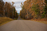 Montana,Whitefish. A country road in autumn.