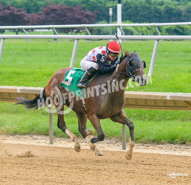 King of Night winning at Delaware Park on 7/17/17
