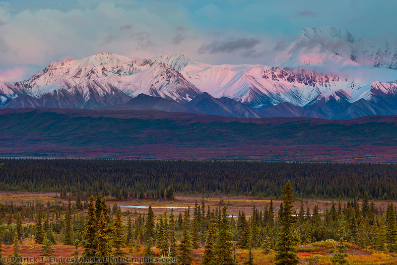 Alpenglow on the foothills of the Alaska Range mountains, Denali National Park, Interior, Alaska.