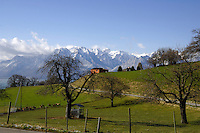 Deer farm close to Mt Pélerin and the mountains.Vevay close to Montreux, Luasanne, Switzerland.