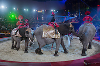 Elephants trained by Rene Caselly performs during the premiere of the new show titled Lights of the Universe in Budapest, Hungary on October 05, 2013. ATTILA VOLGYI
