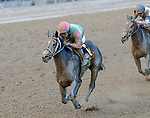 Sippican Harbor (no. 6) wins the Spinaway Stakes (Grade 1), Sep. 1, 2018 at the Saratoga Race Course, Saratoga Springs, NY.  Ridden by  Joel Rosario, and trained by Gary Contessa, Sippican Harbor finished 2 lengths in front of Restless Rider (No. 11).  (Bruce Dudek/Eclipse Sportswire)