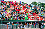 9 July 2015: Vermont Lake Monsters Mascot Champ stands on the visiting team dugout as he entertains the fans during a game against the Mahoning Valley Scrappers at Centennial Field in Burlington, Vermont. The Lake Monsters rallied to tie the game 4-4 in the bottom of the 9th, but fell to the Scrappers 8-4 in 12 innings of NY Penn League play. Mandatory Credit: Ed Wolfstein Photo *** RAW Image File Available ****