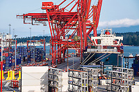 Docked cargo ship being loaded with  containers for export, Vancouver, British Columbia, Canada
