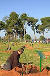 Israel, children planting trees on Tu B'shvat holiday in Herzliya