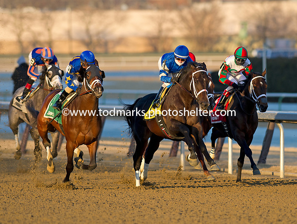 02/03/2018 - Withers Stakes