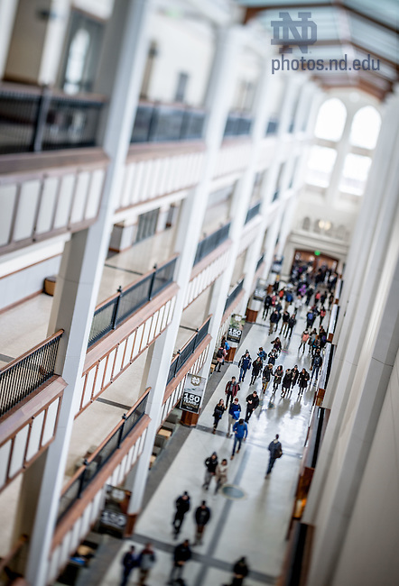 Feb. 18, 2015; Galleria of Jordan Hall of Science. For Notre Dame Magazine. (Photo by Matt Cashore/University of Notre Dame)