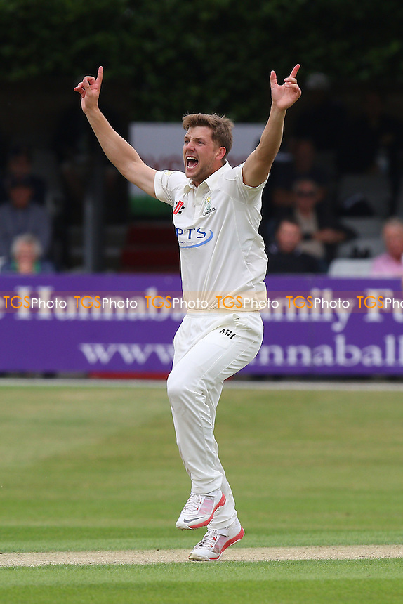 Craig Meschede of Glamorgan claims the wicket of Nick Browne - Essex CCC vs Glamorgan CCC - LV County Championship Cricket at the Essex County Ground, Chelmsford, Essex - 12/07/15 - MANDATORY CREDIT: Gavin Ellis/TGSPHOTO