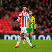 9th February 2019, bet365 Stadium, Stoke-on-Trent, England; EFL Championship football, Stoke City versus West Bromwich Albion; Danny Batth of Stoke City tries to calm things down