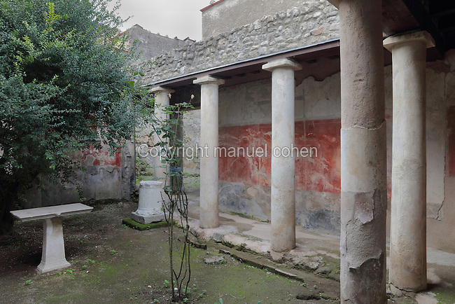 Peristyle, an open colonnade surrounding the viridarium or garden of the Casa del Sacerdos Amandus, or House of the Priest Amandus, Pompeii, Italy. The peristyle has stuccoed tufa columns with Third Style painted decoration on the walls, 20-10 BC. Pompeii is a Roman town which was destroyed and buried under 4-6 m of volcanic ash in the eruption of Mount Vesuvius in 79 AD. Buildings and artefacts were preserved in the ash and have been excavated and restored. Pompeii is listed as a UNESCO World Heritage Site. Picture by Manuel Cohen