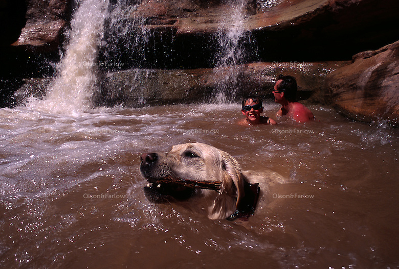 "Campers and canine soak off springtime heat at Indian Creek Canyon, south of Moab, Utah. A magnet for rock climbers, the area is famous for its climbing routes, especially slit-like ""cracks."" The canyon is surrounded by federal land of Canyonlands National Park, forest service and BLM land."