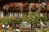 Typical Wooden Swiss House - Grinderwald - Alps - Switzerland