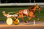 JUNE 27, 2019 : American Mercury, driven by Tyler Butler, sets a new track record in winning Division #1 of the $167,500 Armand Palatucci Pace, New York Sire Stakes for 3 year olds, at Yonkers Raceway, on June 27, 2019 in Yonkers, NY.  Sue Kawczynski_ESW_CSM