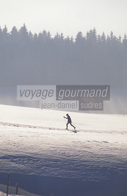 Europe/Allemagne/Forêt Noire/Env de Breitnau : Ski de fond