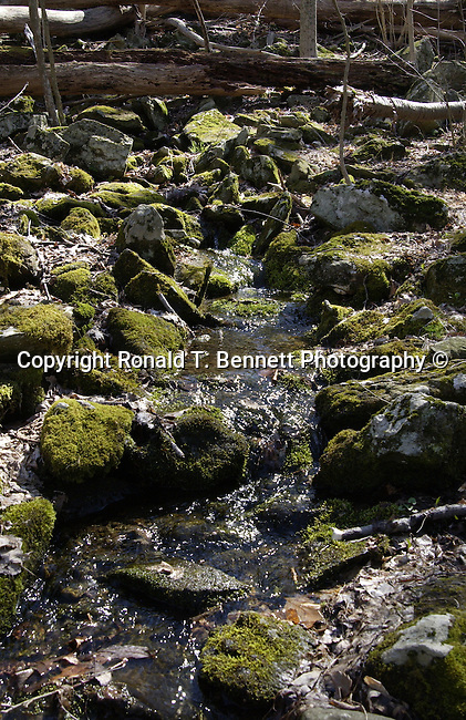 Catoctin Mountain stream Maryland, Old Line State, Free State, Fine Art Photography by Ron Bennett, Fine Art, Fine Art photography, Art Photography, Copyright RonBennettPhotography.com ©
