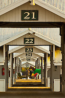 USA-Kentucky-Lexington-Keeneland Racecourse-Misc.