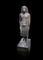 "Ancient Egyptian statue of Aanen, second priest to Amon, granodioite, New Kingdom, 18th Dynasty, (1390-1353, Thebes. Egyptian Museum, Turin. <br /> <br /> A dignitary wearing a wig, a long gown and the leopard skin of a priest. Writing on his belt are the names of Amenhotep III, Aanen and an inscription tells us that the statue depicts the astronomer priest Aanen  by saying "" one knows the procession of the sky"". Aanen was the brother of the queen Teye wife of Amenhotep III. Drovetti collection, cat 1377"