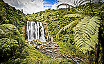 Cascades of water and fronds greet visitors to the Markopa River, near Otorohanga in the North Islands King Country..This New Zealand Fine Art Landscape Print, available in four sizes on either archival Hahnemuhle Fine Art Pearl paper or canvas, is printed using Epson K3 Ultrachrome inks and comes with a lifetime guarantee against fading..All prints are signed and numbered on the lower margin and come with my 100% money back guarantee on the purchase price, should you not be  completely happy with the quality of the delivered print or canvas.