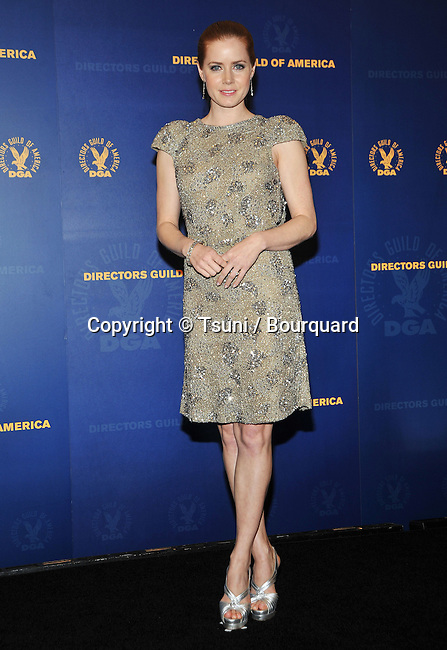 Amy Adams   -<br /> DGA - 61th Director Guild Awards at the Century Plaza Hotel In Los Angeles.