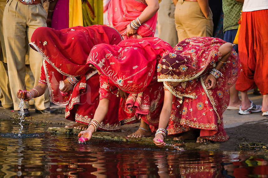 Rajasthani women wash rose petals at the GANGAUR GHAT on the shore of PICHOLA LAKE for the GANGAUR FESTIVAL or MEWAR FESTIVAL - UDAIPUR, RAJASTHAN, INDIA