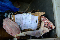NIGERIA, Lagos, Frozen Food, selling of illegal imported chicken meat from Europe on the Arena market, the meat is smuggled from Benin, box with label Made in Spain / NIGERIA LAGOS, Arena Markt , Verkauf von illegal importiertem Huehnerfleisch aus der EU z.B. Spanien, das Fleisch wird aus Benin nach Nigeria geschmuggelt