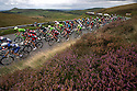 06/09/16<br /> <br /> Riders make their way up the category one climb on the A537 towards the Cat and Fiddle, over the Cheshire Peak district on the third day of the Tour of Britain.<br />  <br /> All Rights Reserved, F Stop Press Ltd. +44 (0)1773 550665