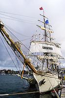Sweden, Stockholm. Tall Ships Race Stockholm 2007. Europa.