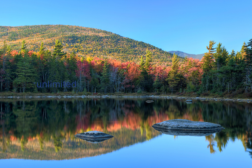 Rocks and trees, Lily Pond, White Mountain National Forest, New Hampshire, USA.