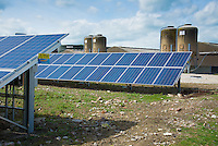 Solar panels used to generate electricity for a pig farm, Driffield, East Yorkshire.