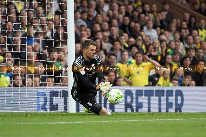 Marcus Bettinelli of Fulham makes another save during Norwich City vs Fulham, Sky Bet EFL Championship Football at Carrow Road on 14th April 2017