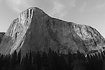 """""""Capitan's Glory"""" Black and White El Capitan, Yosemite NP. El Capitan is one of the most spectacular granite monoliths in the world.  Climbers from around the world flock to Yosemite Valley every year for a chance to climb this grand spectacle.  The most famous climbing route on El Capitan is """"The Nose"""".  The route ascends the prow on the sun/shade line to the right of the Heart.  The prominent Heart appears as if was carved into the rock but is a natural formation on El Capitan."""