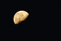 Gibbous moon. Houston Texas.